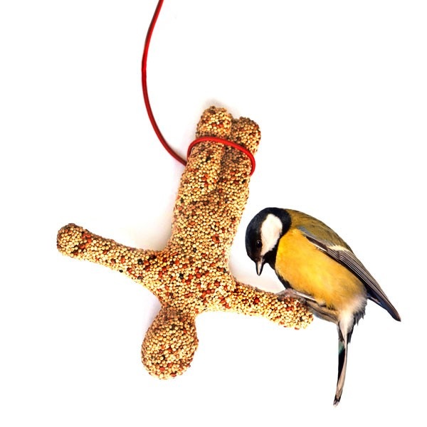suckuk-bungee-bird-feeder1