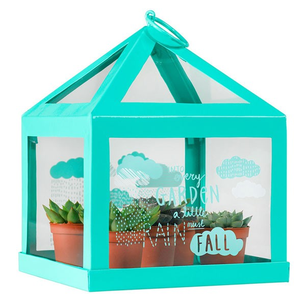 thoughtful-gardener-mini-green-house-1