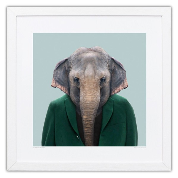 evermade-zoo-portrait-print-elephant-1.1481717655