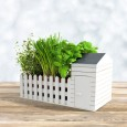 Indoor Allotment Planter - Red Candy
