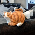 Cat Tissue Holder - Red Candy