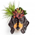 Declan the Dachshund Wall Planter - Red Candy