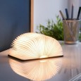 LED Book Light - Red Candy