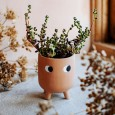 Little Stumpy Planter - Red Candy
