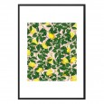 Lemonade Framed Print - tropical fruit art print - 83 Oranges