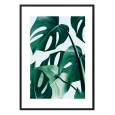 Monstera Leaf Framed Print - Red Candy