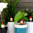 Naughty Gnomes Plant Markers - Red Candy