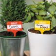 Plant Name Badges - Red Candy