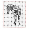 Zebra Print Tea Towel - Red Candy