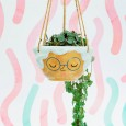 Rose Hanging Planter - Red Candy