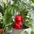Self Watering Cat (Red) - Red Candy