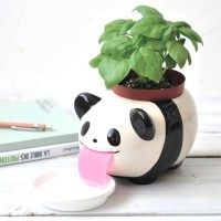 Papa Peropon Drinking Animal Planter (Panda) - Red Candy