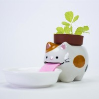 Peropon Drinking Animal Planter (Cat) - Red Candy