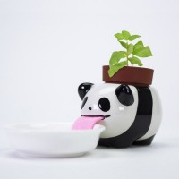 Peropon Drinking Animal Planter (Panda) - Red Candy