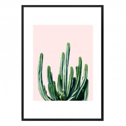 Cactus V6 Framed Print - Red Candy