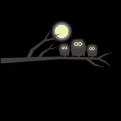 Glow in the Dark Owl and Moon Wall Sticker - bedroom wall decor
