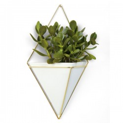Umbra Trigg Wall Vessel Large - Brass - geometric plant pot