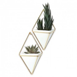 Umbra Trigg Wall Vessel Small - Brass - Set of 2 - hanging caddies