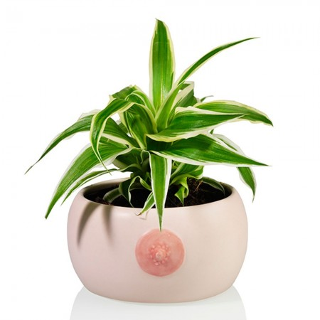 Booby Planter - Red Candy