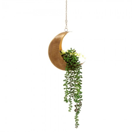 Celestial Moon Hanging Planter - Red Candy