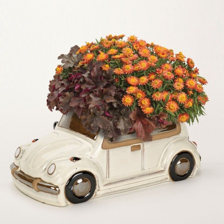 Cream Beetle Planter - Red Candy