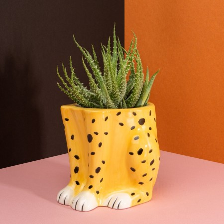 Cheetah Plant Pot - Red Candy