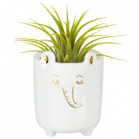 Evie the Elephant Planter - Red Candy