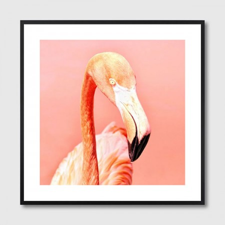 Pink Paradise Flamingo Framed Print - Red Candy