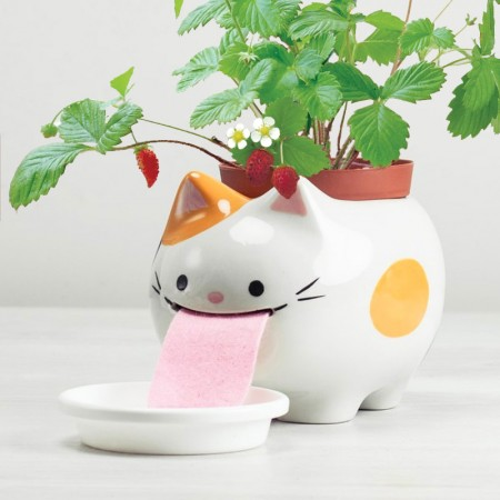 Papa Peropon Drinking Animal Planter (Cat) - Red Candy