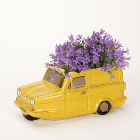 Robin Reliant Planter - Red Candy