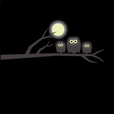 Glow in the Dark Owl & Moon Wall Sticker - Red Candy