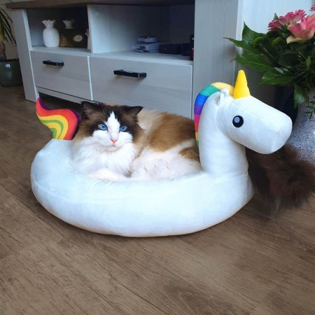 Unicorn Pet Bed - Red Candy