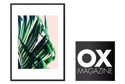 Red Candy Press Feature - OX Magazine