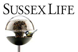 Red Candy Press Feature - Sussex Life
